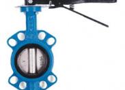 Затвор дисковый Water Тechnics BVGR  WT DN 65 поворотный межфланцевый